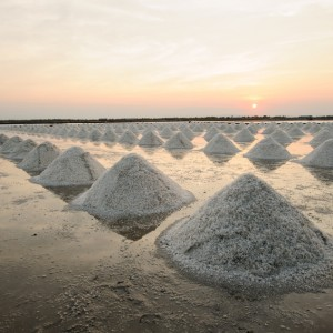salt farm in Portugal