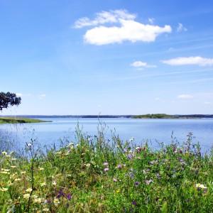 Alqueva Lake, Portugal 4x4 private tour